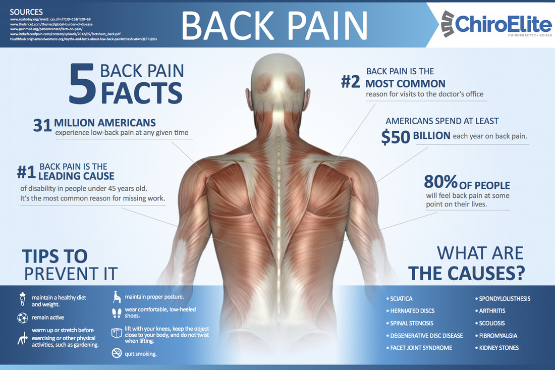 what causes low back pain, how to treat low back pain, do i have sciatica, low back pain facts